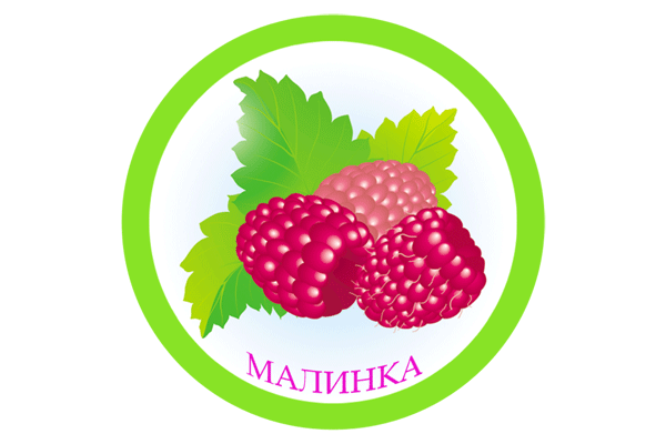 Щелково, Детский сад № 9 «Малинка» общеразвивающего вида ЩМР МО (корп. 2)