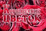 Щелково, Королевский цветок (доставкацветов)
