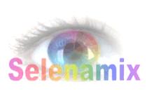 Логотип SelenaMix (мастерская по покраске автомобилей) - Справочник Щелково