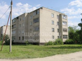 Щелково, улица Московская, 134б