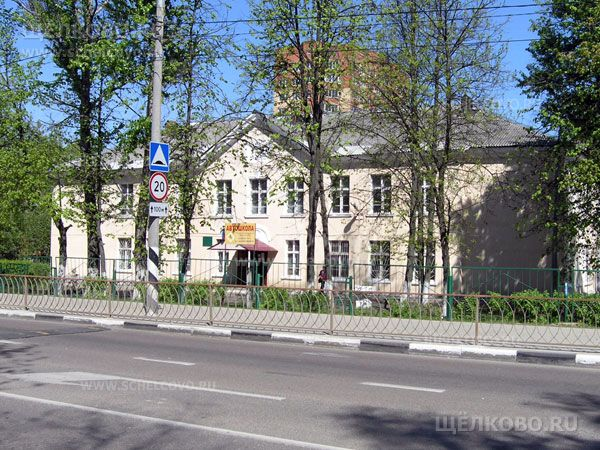 Фото школа № 8 г. Щелково (ул. Центральная, д.55) - Щелково.ru