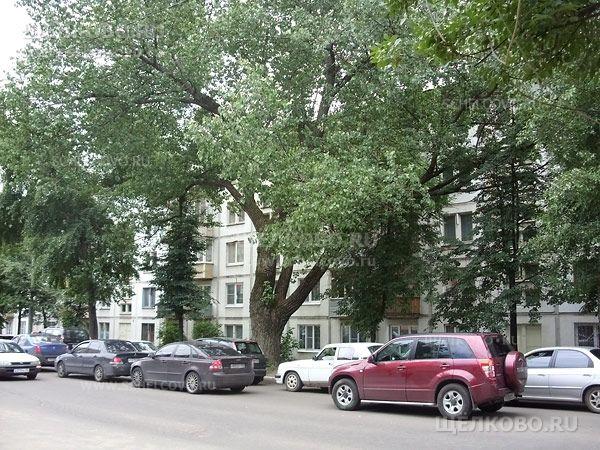 Фото г. Щелково, 1-й Советский переулок, дом 4 - Щелково.ru