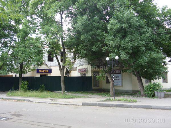 Фото реконструкция оздоровительного центра в Щелково (ул. Советская, д. 65) - Щелково.ru