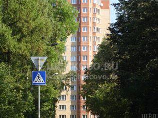 Щелково, ул. Строителей, 3 - 3 сентября 2009 г.