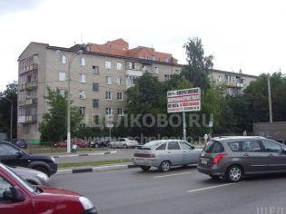Адрес Щелково, пер. 1-й Советский, 6а - 4 июля 2009 г.
