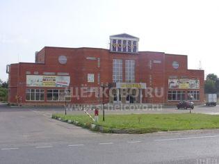 Щелково, улица Центральная, 100