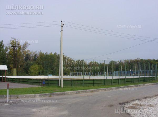 Фото городской детский стадион в Щелково (ул.Центральная) - Щелково.ru