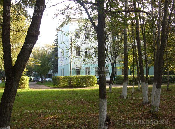 Фото в парке на территории больницы (г. Щелково, ул.Парковая, д.8) - Щелково.ru