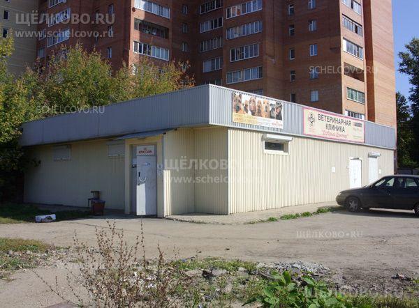 Фото ветеринарная клиника около дома №17/1 по улице Краснознаменская г. Щелково - Щелково.ru