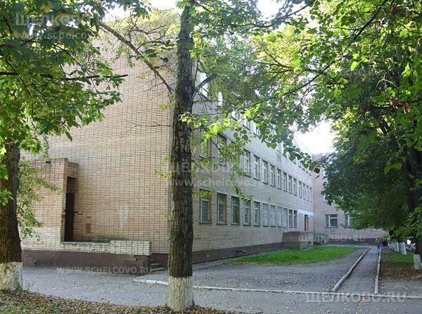 Фото гимназия г. Щелково (1-й Советский переулок, д.32) - Щелково.ru
