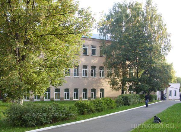 Фото корпус профессионального училища №38 г. Щелково (ул.Малопролетарская, д.28) - Щелково.ru
