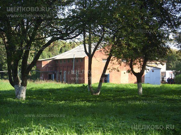 Фото территория больницы в Щелково (ул. Краснознаменская, д.8, корпус4) - Щелково.ru