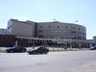 Щелково, ул. Талсинская, 1а (ТК «Центральный») - 13 июля 2010 г.