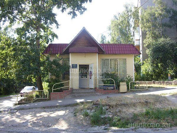 Фото магазин около дома 12/9 по улице Комсомольская г. Щелково - Щелково.ru