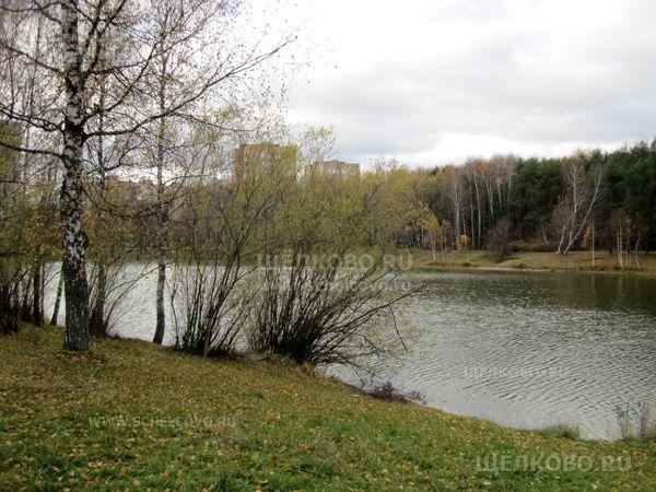 Фото на берегу озера в Звездном городке - Щелково.ru