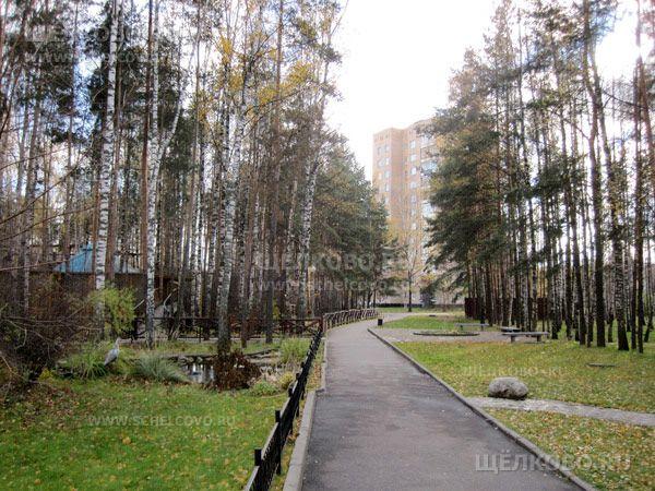 Фото в Звёздном городке - Щелково.ru