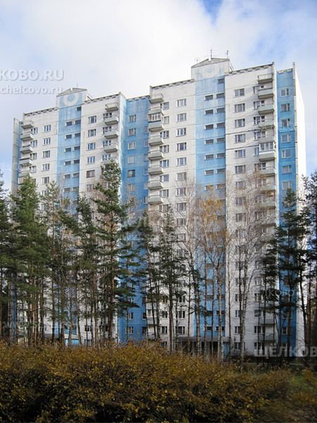 Фото Звёздный городок, дом 48 - Щелково.ru