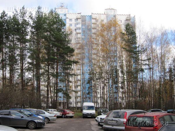 Фото Звёздный городок, дом 49 - Щелково.ru