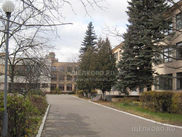 Фото на территории средней школы имени В. М. Комарова в Звёздном городке - Щелково.ru