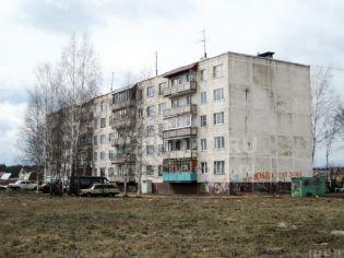 Огуднево (Щелковский р-н),  Огуднево, 8