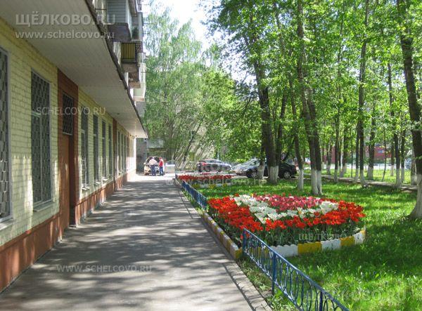 Фото г. Щелково, ул. Комарова, дом 18, корпус 1 - Щелково.ru