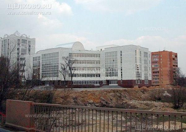 Фото новый торговый комплекс «КЭМП» в Щелково (Пролетарский проспект, д.10), за ним— дом№4 по ул.Заречная - Щелково.ru