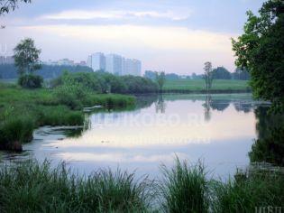 Фото деревень Новая Слобода и Старая Слобода Щелковского района
