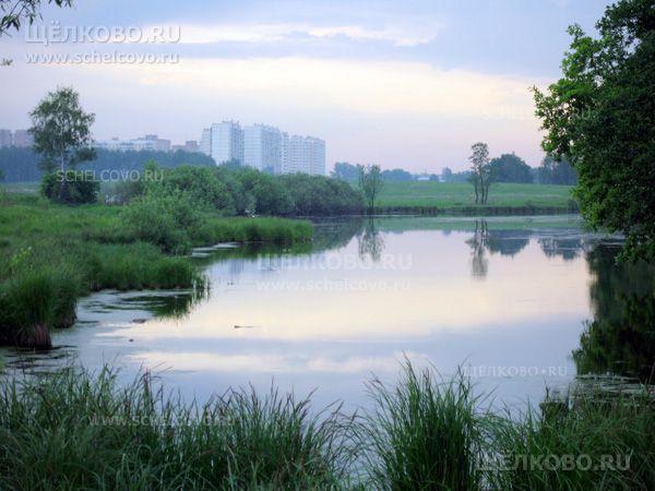 Фото Барский пруд со стороны деревни Старая Слобода (на заднем плане— дома города Фрязино) - Щелково.ru
