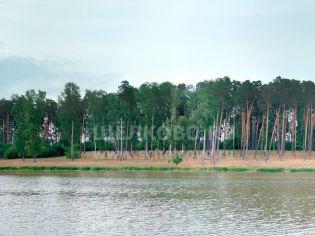 Адрес Старая Слобода (Щелковский р-н),  Старая Слобода, часовня - 25 июня 2007 г.