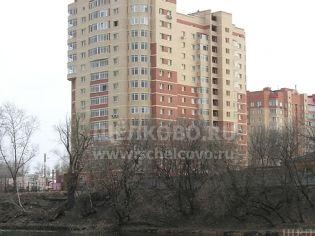 Щелково, пр-т Пролетарский, 9, корп. 3 - 7 апреля 2008 г.