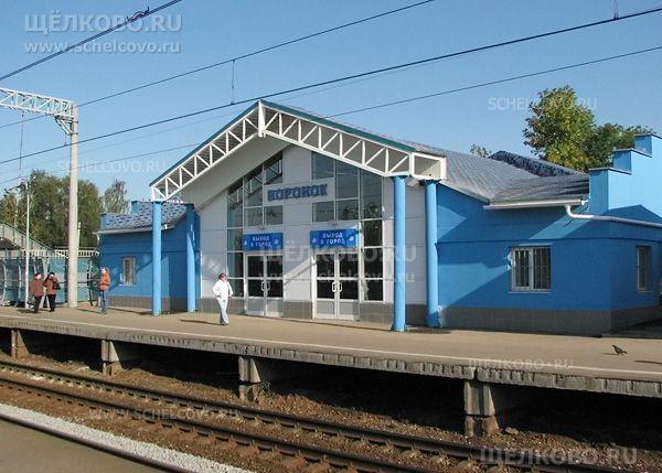 Станция Воронок Щелково. Платформа Воронок Щелково - фото Дениса Михайлова