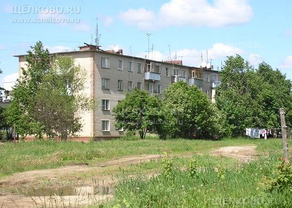 Фото деревня Огуднево, дом 7 - Щелково.ru
