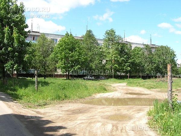 Фото деревня Огуднево, дорога к дому 6 - Щелково.ru