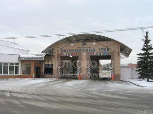 Щелково, ул. Заречная, 84 - 7 января 2009 г.