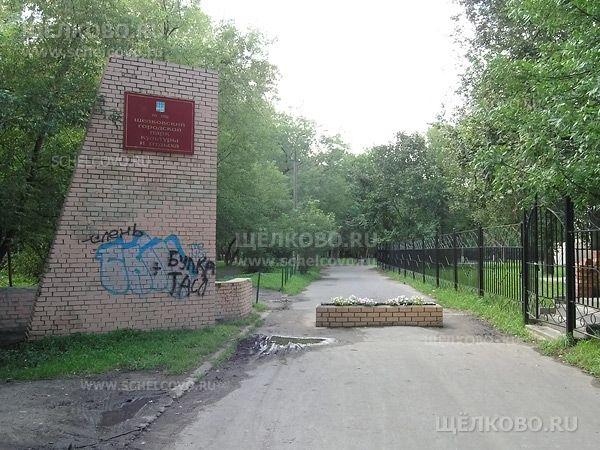 Фото перед главным входом в Щелковский городской парк культуры и отдыха (ул.Пушкина г. Щелково) - Щелково.ru